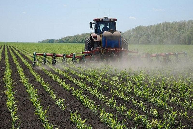 Культиватор-растениепитатель КМО-11,2 (24х45) с АТП